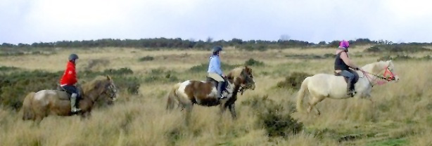 Horse riding on Exmoor