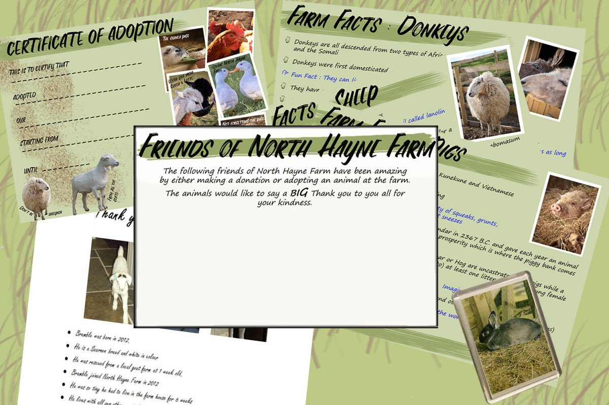 Friends of North Hayne Farm